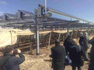 fotovoltaico-mola-7mar09