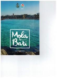copertina brochure APM