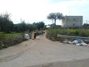 Degrado nella campagna molese, a poca distanza dal centro stoccaggio rifiuti della Zona industriale